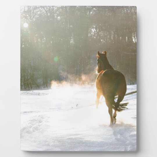 Horse in the snow plaque