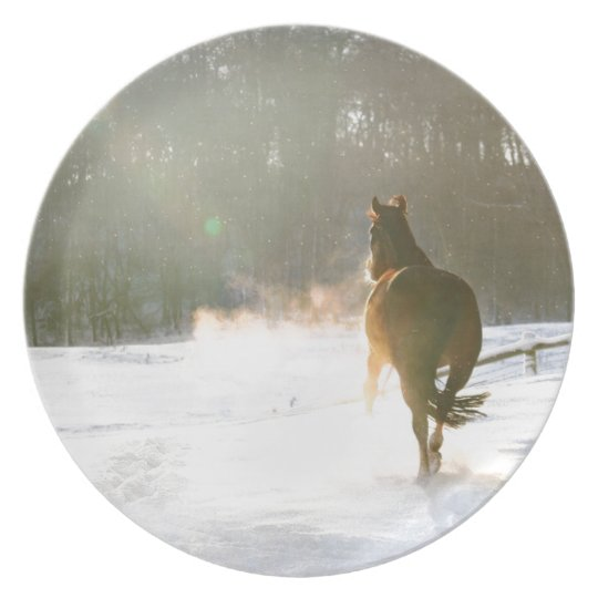 Horse in the snow plate