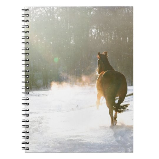 Horse in the snow spiral notebook