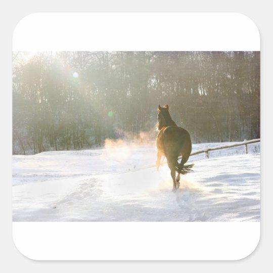 Horse in the snow square sticker