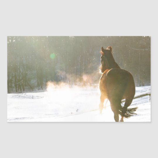 Horse in the snow sticker