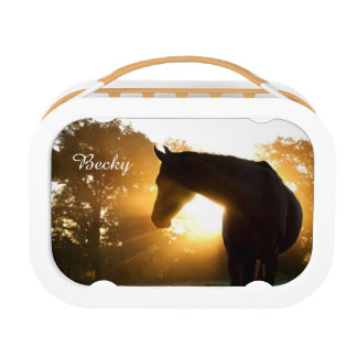 Horse in the Sun Lunchbox