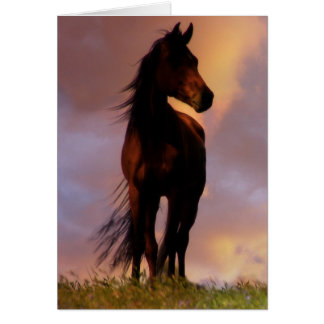 Horse in the Sunset Birthday Card