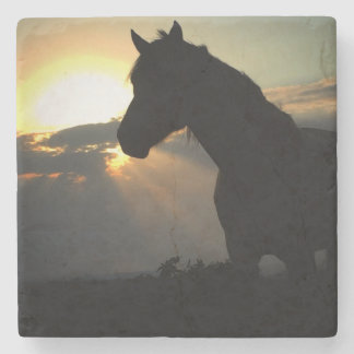 Horse in the Sunset Coaster