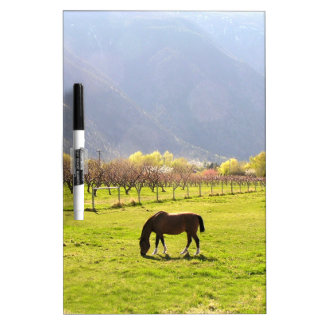 Horse In The Valley Dry-Erase Board