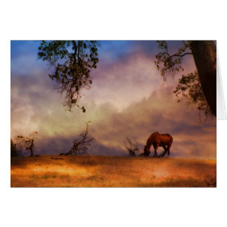 Horse in the Wind Equine Sympathy Card