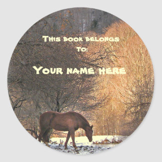Horse in Winter Bookplate Classic Round Sticker