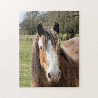 HORSE JIGSAW PUZZLE