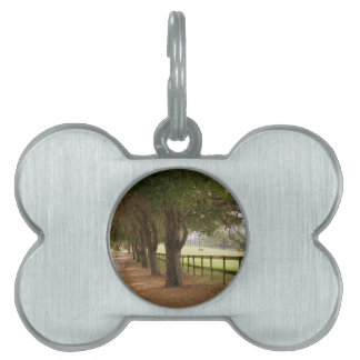 Horse Lane Pet Tags