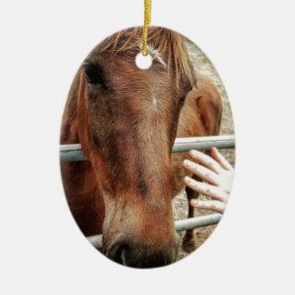 Horse Life Ceramic Ornament