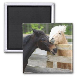 Horse Lovin' Magnet