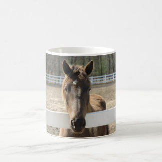 Horse Meets You at the Fence Coffee Mug
