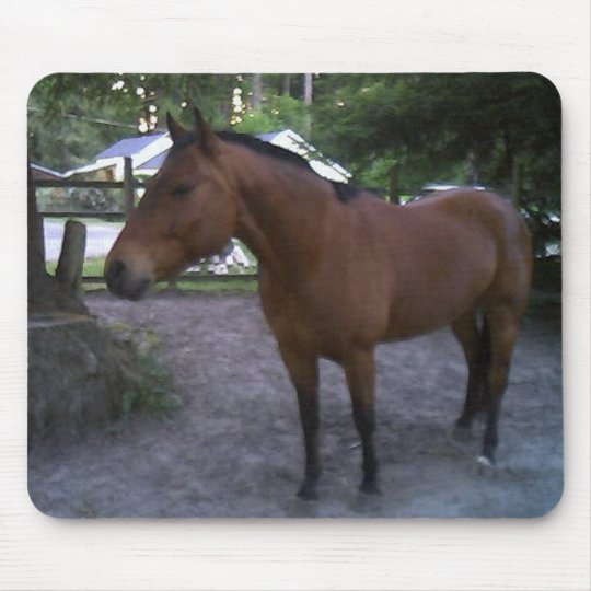 Horse named Cruz Mouse Pad