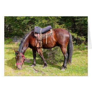 Horse near El Chalten, Argentina Card