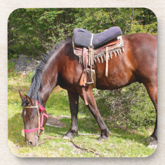 Horse near El Chalten, Argentina Coaster
