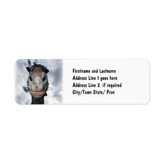 Horse Nose Knows! Funny Smiling Horse Return Address Label