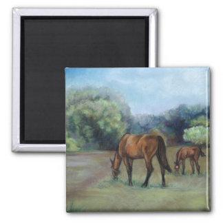Horse Pasture Art Magnet