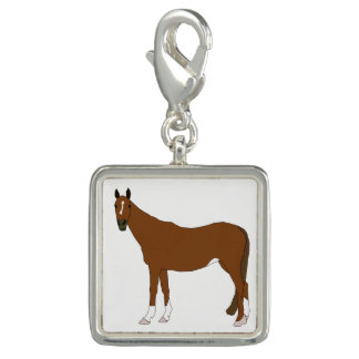 Horse Photo Charms