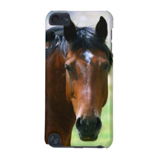 Horse picture 2 iPod touch 5G case