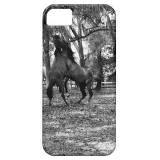 Horse Playing Case For The iPhone 5
