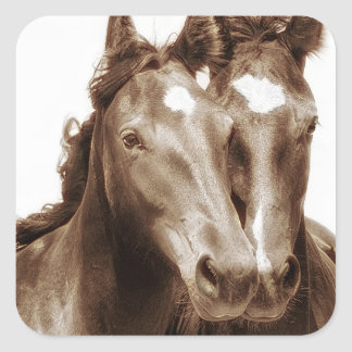 Horse Portrait III Square Sticker