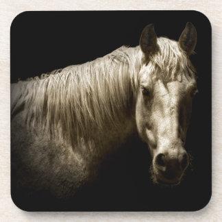 Horse Portrait VI Coaster