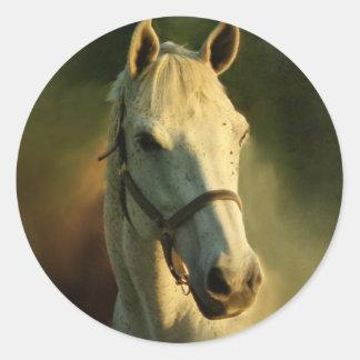 horse portriat classic round sticker