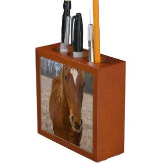 Horse pose desk organizer