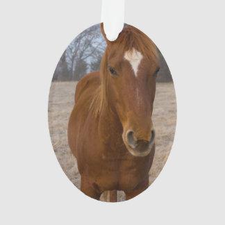 Horse pose ornament