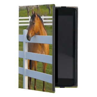 Horse poses by Flathead Cherry orchard near Case For iPad Mini