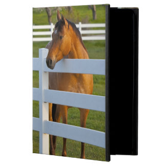 Horse poses by Flathead Cherry orchard near Cover For iPad Air