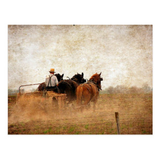 Horse Powered Field Work Postcard