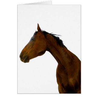 Horse Profile Greeting & Note Cards