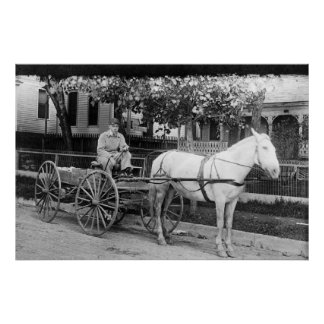 Horse pulling Delivery Wagon Photograph Poster