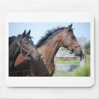 Horse Race Finish Line Mouse Pad