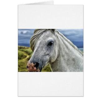 Horse Ranch Farm Destiny Nature Background Card