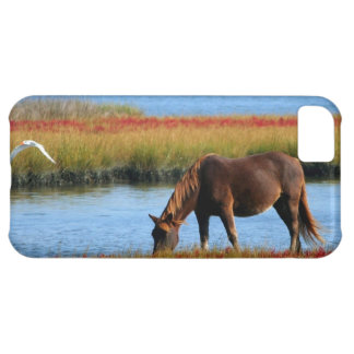 Horse Ranch Farm Destiny Nature Background iPhone 5C Case