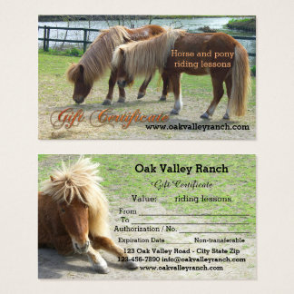 Certificate templates gifts certificate templates gift for Horseback riding lesson gift certificate template