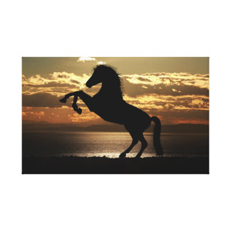 Horse silhouette | Animal Photography | sunrise Canvas Print