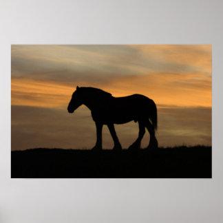 Horse Silhouette Print