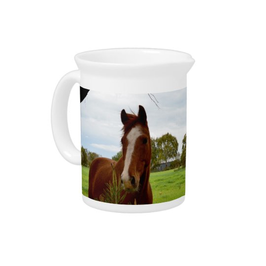 Horse_Sniff,_Milk_Jug_Pitcher. Drink Pitchers
