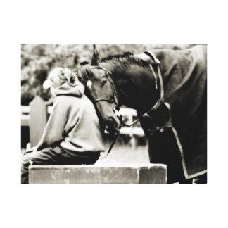 Horse Snuggles Canvas Print