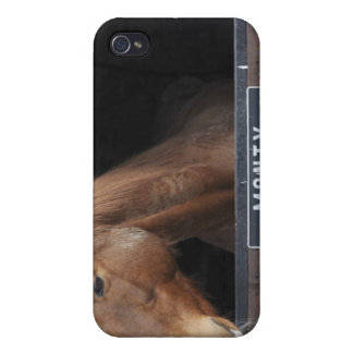 Horse standing looking out of its stable iPhone 4 cases