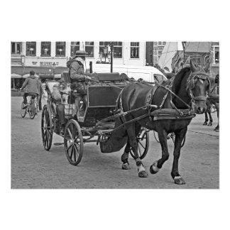 Horse stroller in Bruges Photo Print