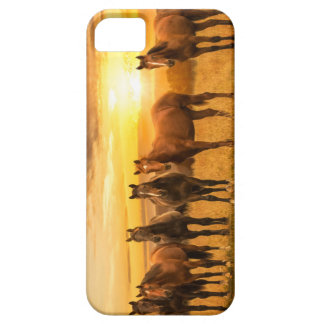 Horse sunset iPhone 5 case