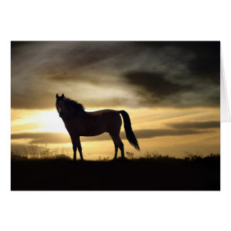Horse Sympathy Greeting Card