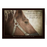 Horse Sympathy With Nice Words Greeting Cards