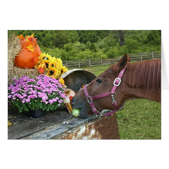 Horse Thanksgiving Card