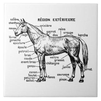 Horse Tile