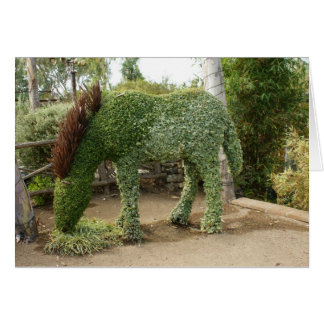 Horse Topiary Greeeting Card